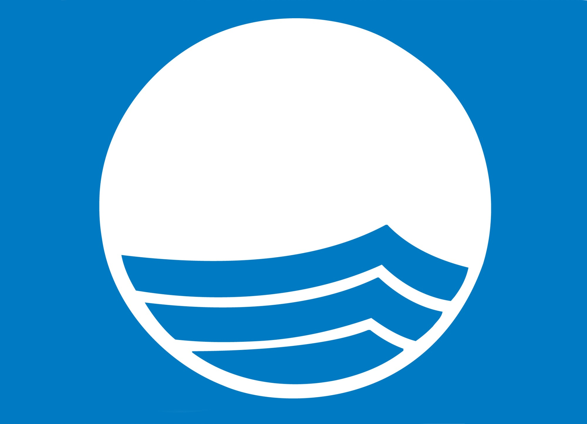 Logo Blauwe vlag